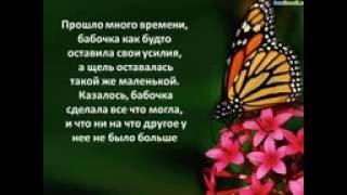 Урок бабочки. Притча  Мотивация