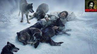 Волки (рассказ)