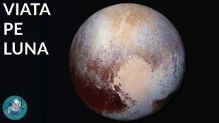 Cum ar arata viata pe Pluto