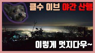[C.R]이브날 야간산행이 왠말이냐!! Feat. 야경,강아지 똘이