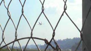 Royal Brunei Airoplane takeoff