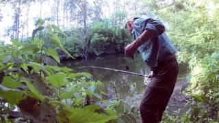 Багатоденна рибалка на річці Уди, сазанчики.