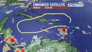 Tropical weather forecast: August 5, 2019