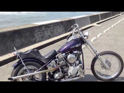 63`PAN RIGID `PURPLE HAZE` on  Beachside