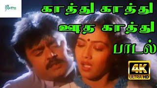 Kathu Kathu Ootha Kathu   காத்து காத்து ஊத காத்து   Vijayakanth , Reka  Love Duet H D Song