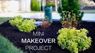Mini Makeover Project // Garden Answer