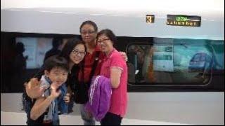 廣深港高鐵香港段正式開通營運 香港開啟高鐵新時代