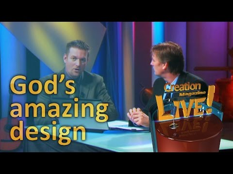God's amazing design -- Creation Magazine LIVE! (2-06)