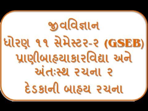 Dedaka Ni Bahya Rachana 11th Biology Semester-2 By Jolly Joshipura Gseb