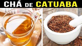 Conheça Todos Os Benefícios do Famoso Chá de Catuaba Muito Usado no Brasil