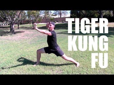 REAL TIGER STYLE KUNG FU | Chinese Martial Arts