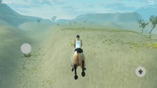 Woman and Horse Riding
