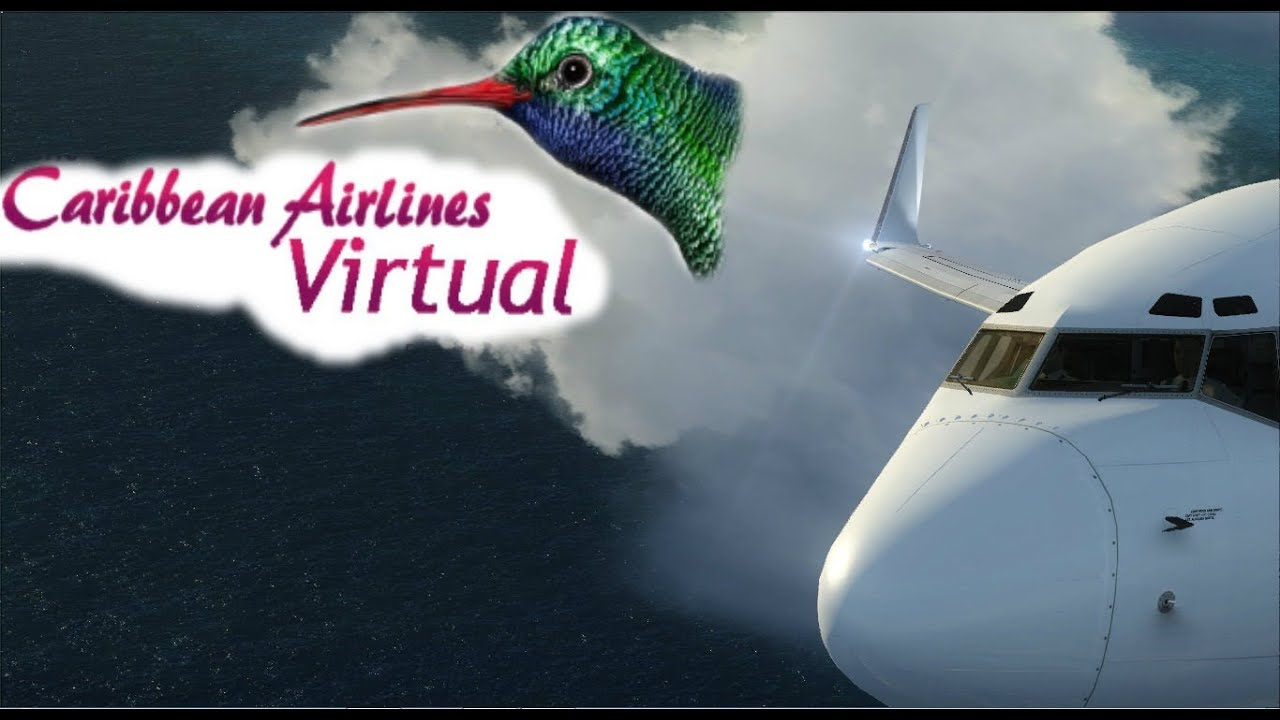 Caribbean Airlines 737 Barbados to St Maarten FSX - LOW PASSES AND MORE!