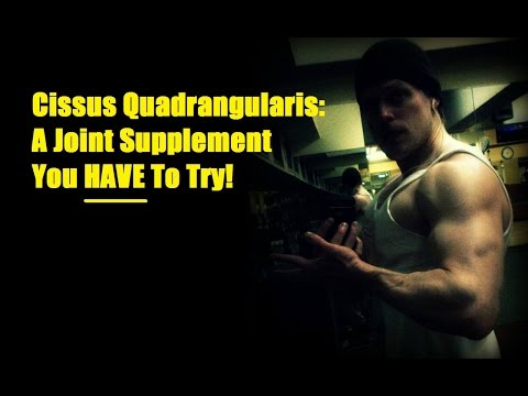 Cissus Quadrangularis:  A Joint Supplement You HAVE To Try! - Cory McCarthy -