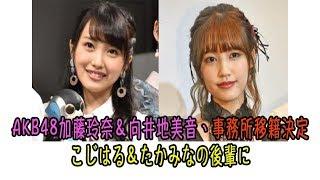 人気アイドルグループ・AKB48の加藤玲奈(20)と向井地美音(19)が、芸...