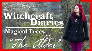 MAGICAL TREES: The Alder (Fearn) - WITCHCRAFT DIARIES
