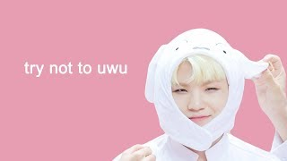 try not to uwu with seventeen