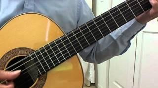 Tout L'amour/Passion Flowers-Guitar