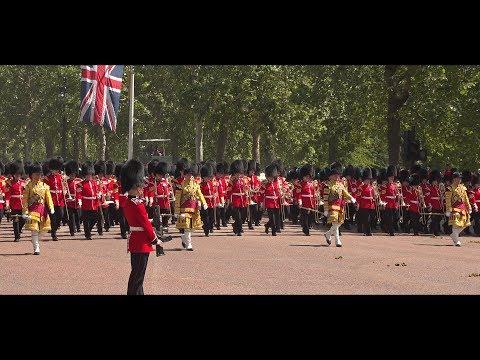 Scots guards 1st battalion IX coy Regimental colours flag
