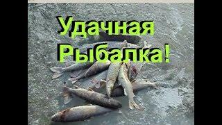 Рыбалка сетью зимой,  ЛИНКИ ЩУКИ, вытаскивали из проруби во льду..