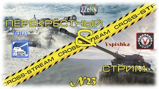 Cross-Stream №23: Arti25 и Vspishka