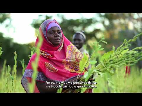 Learning by Doing: Conservation Agriculture Techniques Improve Yields, Income and Forest Cover