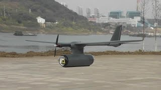 Sky Observer Long Range FPV Plane Maiden Flight