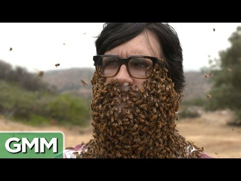 10,000 Bee Beard
