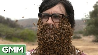 Repeat youtube video 10,000 Bees Beard