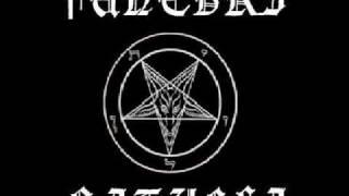 Funebri Rituali - Insanity...