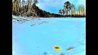 ПЕРВЫЙ ЛЕД на таёжном ручье Они рвут лески Зимняя рыбалка 2020 2021