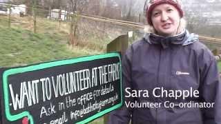 Volunteering at the Farm