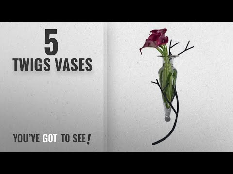 Top 10 Twigs Vases [2018 ]: Glass Vase on Twig Sconce-Clear