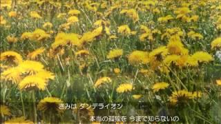 ダンデライオン~遅咲きのたんぽぽ~/松任谷由実 Yumi Matsutoya〈ピアノ弾き語り〉Covered by Nontan