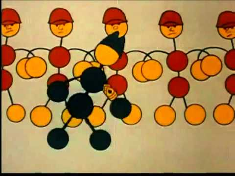 Vinyl Chloride Production 1954 BF Goodrich Company