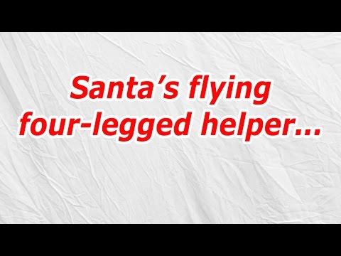 Santa's flying four legged helper (CodyCross Answer/Cheat)