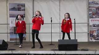 Get Welsh Festival 2014  Mini Minx