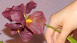 Ирис из холодного фарфора \ Iris of cold porcelain(Подробный мастер класс по лепке цветка ириса из холодного фарфора, по этому МК можно так же, лепить ирис..., 2015-03-22T22:23:53.000Z)