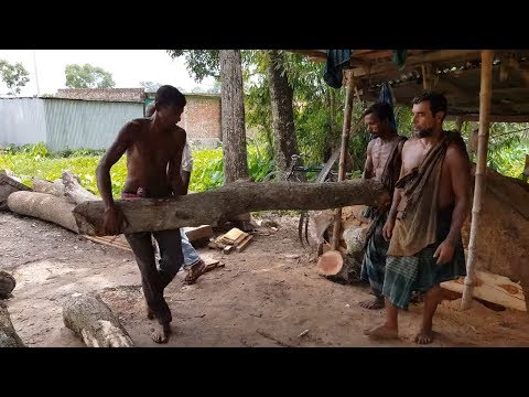 Banyan Tree Wood Cutting with Skilled Unprotected Worker।Logging Sawmill Cutting Banyan Tree in Asia from YouTube · Duration:  12 minutes 18 seconds