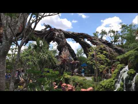 Pandora: The World of AVATAR - Tour of The Valley of Mo'ara and Floating Mountains