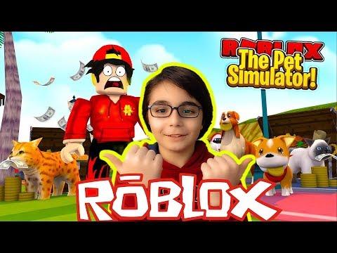 ROBLOX PET SİMULATOR OYNUYORUZ !?! CANLI YAYIN 😱 - Roblox