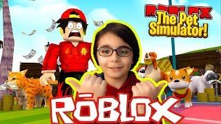 ROBLOX PET SİMULATOR OYNUYORUZ !?! CANLI YAYIN  - Roblox