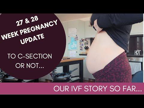 27 & 28 WEEK PREGNANCY UPDATE   IVF PREGNANCY