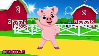 учить животных для малышей - животные для детей - видео развивающее #7