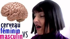 cerveau féminin vs cerveau masculin