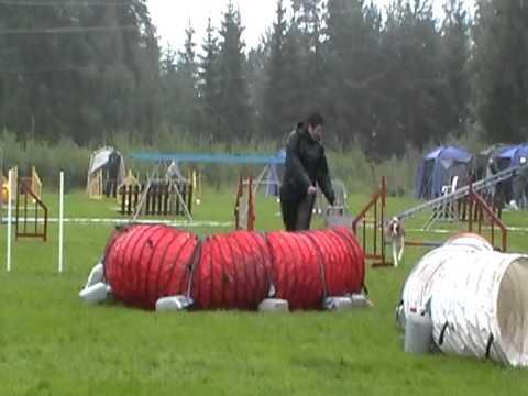 Nes 7. august 2011. Hopp - 8. plass m 5 feil og ca 11 sek i tidsfeil.MOD