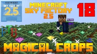 Magical Crops / Sky Factory 2.5 / FTB / Minecraft / Episode 18 / Tutorial