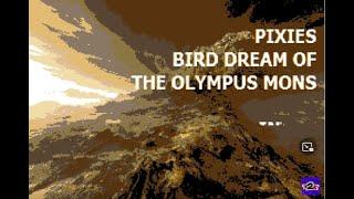 Pixies - Bird Dream of the Olympus Mons - Karaoke - Instrumental Cover