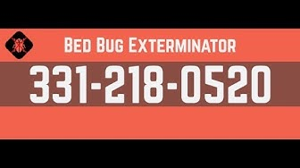 Bed Bug Exterminator Bartlett IL | 331-218-0520