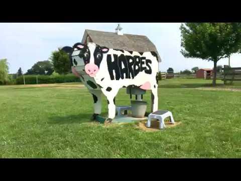 A Tour Of Harbes Family Farm In Mattituck